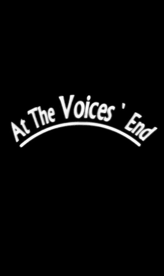 At The Voices' End ::By Finity Games